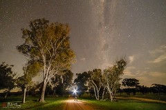 The Dark Road. (Bill Thoo) Tags: ngc obley nsw australia thedarkroad road lanscape night astrophotography stars travel rural country bush sony a7rii samyang 14mm longexposure milkyway