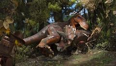 Battle of giants (Shobrick) Tags: dino dinausors jurassic lego minifig shobrick canon 5d macro fight battle trex ty tyrannosaurusrex triceratops