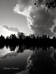 Ink Blot (bonniecairns1) Tags: lake comolake bc canada blackandwhite symmetry reflection calm tranquil nature outdoors clouds sky