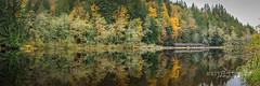 Fall Train Pano (katurley) Tags: panoramic reflection train