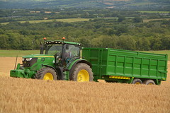 John Deere 6140R Tractor with a Thorpe Grain Trailer (Shane Casey CK25) Tags: john deere 6140r tractor thorpe grain trailer jd winter barley green kilmagner county cork harvest grain2016 grain16 harvest2016 harvest16 corn2016 corn crop tillage crops cereal cereals golden straw dust chaff ireland irish farm farmer farming agri agriculture contractor field ground soil earth work working horse power horsepower hp pull pulling cut cutting knife blade blades machine machinery collect collecting mhdrescher cosechadora moissonneusebatteuse kombajny zboowe kombajn maaidorser mietitrebbia nikon d7100