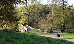 The River Wye (Blue Sky Pix) Tags: haddon hall river wye derbyshire peak district national park england bridge pentax