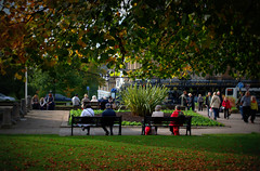 Relaxing in Harrogate (Tony Worrall) Tags: england northern uk update place location north visit area county attraction open stream tour country welovethenorth yorks yorkshire harrogate town scene nice resort relax sunlit quaint square bench seat candid people