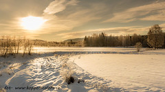 20160115089360 (koppomcolors) Tags: koppomcolors winter vinter värmland varmland sweden sverige scandinavia