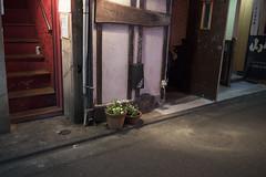 IMG_9710 (Dimitri SoyFeliz) Tags: japan shinjukuku shinjuku tokyo canon eosm eos 22mm 22mmf2 minimal minimalism minimalist newtopographics desolate outdoors hiragana