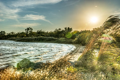 299-366-4 (garyinhere) Tags: fortsupply oklahoma unitedstates hdr sony a99 lake countryside tree fence sunset wave water