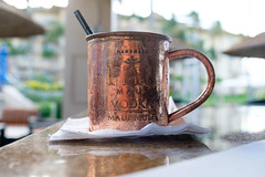 maui mule (msr) Tags: bar liquor kapalua hawaii unitedstates us