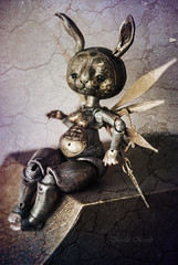 Steam Powered Bunny  (Koala Krash) Tags: bjd balljointdoll balljointeddoll doll dolls tendreschimres tendreschimeres tendres chimres koala krash koalakrash darkdojy fenouil rabbit bunny chubby steampunk steam punk robot automate