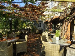 5802 Autumn Patio (Andy - Busyyyyyyyyy) Tags: 20161110 autumncolour bhday13 broughholiday ccc chairs harome leaves lll ooo orange patio pergola ppp seats sss tables thepheasantinn ttt yorkshire