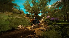 The Witcher 3 (cthomsondrew) Tags: thewitcher3 thewitcher witcher witcher3 pc gaming screenshot screenshots nvidia ansel geforce gtx970