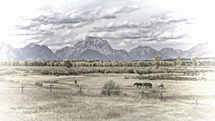 Working Cattle Ranch, Jackson Hole Wyoming, Fall 2016 (Hawg Wild Photography) Tags: horses animal animals horse jacksonholewyoming grand teton tetons national park terrygreen nikon d810 2470mm