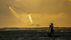 FISHING (CUMBUGO) Tags: fish fishing man morning sun sunlight net water ocean sea clouds mood brazil nikkor 70200mm f28 nikon d800 d800e atmosphere