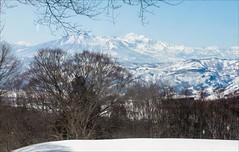 P1120278-Edit Japan Nozawa Onsen (Dave Curtis) Tags: 2013 japan kx march pentax panorama ski fields snow trees mountains breathtakinglandscapes