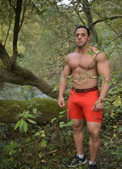 Build (Klinikle) Tags: model male man woodland bodybuilder universe muscle fitness fabiano