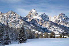 the TETONS - the 'American Alps' (laura's Point of View) Tags: tetons thegrand mountains rockymountains grandtetonnationalpark nationalpark park mountain snow cold chill chilly winter wonderland pine pinetree afternoon sky beautiful amazing wander wanderlust outdoors wyoming jacksonhole western west oldwest extreme