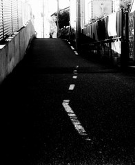 (cutting line) (Dinasty_Oomae) Tags: bolsey  bolseyb2 b2  blackandwhite bw monochrome outdoor  chiba   ichikawa  dashedline  road