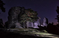 Lightpainting (Oscar Garca) Tags: roca rock noche night stars estrellas lightpainting dark oscuro longexposure largaexposicin arbol tree