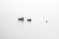 Minimal composition (Tony Shertila) Tags: 20161027110600 england gbr poole pooletownward unitedkingdom geo:lat=5071180718 geo:lon=198223829 geotagged bw europe britain dorset boats harbor harbour composition bouy horizon wether day fog haze outdoor sea water ripples