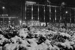 The winter gains steam (Unicorn.mod) Tags: 2016 landsape bw blackandwhite cityscape city manuallens samyang35mmf14asumc samyangmf35mmf14edasumcaecanonef