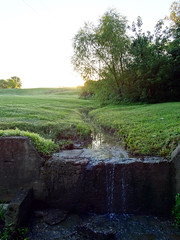 "Pin Oak ""Falls"" (Wits End Photography) Tags: wood morning light sun plant tree green nature water field grass rural creek sunrise river landscape outside dawn daylight early waterfall am woods stream exterior view ditch natural outdoor country lawn scenic brook picturesque grounds turf sod sunup daybreak morn firstlight trickle"