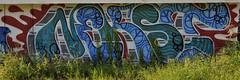 DSC_0905 (rob dunalewicz) Tags: atlanta abandoned graffiti tags d30 urbex nekst 2015 ssd