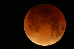 "Red Supermoon by PHIL MERRYMAN • <a style=""font-size:0.8em;"" href=""http://www.flickr.com/photos/74627054@N08/21605009810/"" target=""_blank"">View on Flickr</a>"