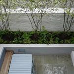 Pimlico Courtyard September 2015