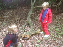 Tigers (Year 1) (Moulsford) Tags: outside outdoors tigers year2 2015 forestschool autumnterm