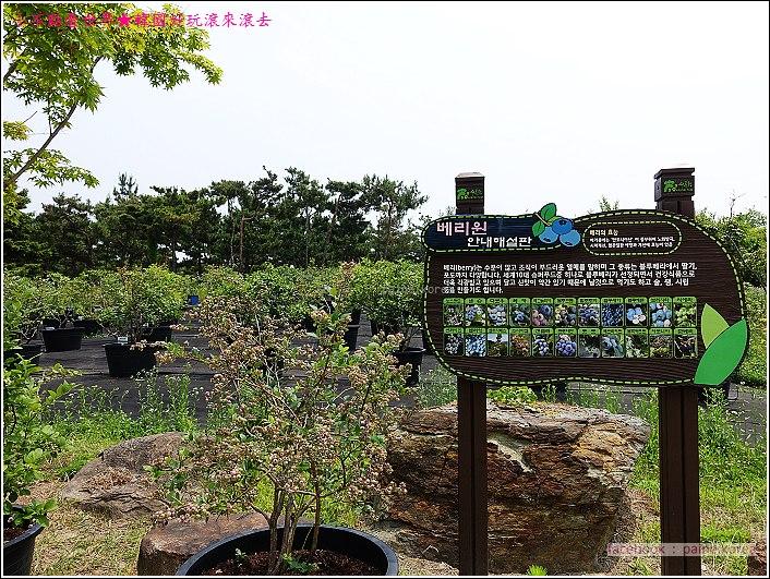 大田韓巴樹木園 (18).JPG