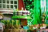 FAZENDINHA DO TULIO 2015 FINAL-35 (agencia2erres) Tags: aniversario 1 infantil festa ano fazenda fazendinha