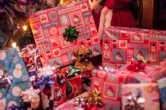 Presents (Lady Pandacat) Tags: christmas december pentax 2015 pandacat tinaangel ladypandacat