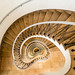 Spiral Staircase - view down