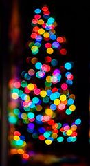 Bokeh Tree (Michael Kline) Tags: christmas tree lights virginia focus december bokeh roanoke manual 2015