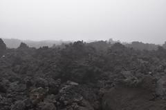 _DSC0646 (lnewman333) Tags: latinamerica volcano highlands guatemala antigua centralamerica pacaya lavarocks activevolcano volcanpacaya