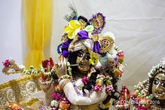 Janmashtami_250816_IMG_2889 (iskcon leicester) Tags: radhamadhava radha madhava srila prabhupada august 2016 janmashtami citycentre festival leicester drama music arts gopidots party birthday krishna hare rama maha mantra meditation bhaktiyoga bhakti