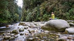 Being Still (luke.me.up) Tags: water flow longexposure nd110 nikon d810 tamron1530 haida150