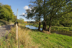 Darent River Walk (Adam Swaine) Tags: rivers river kent darent eynsford countryside uk english england fields swaine 2016 britain counties trees nature water grass canon autumn landscape rural riverdarent