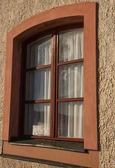 Reflections (Yvonne L Sweden) Tags: hst october window reflection spegling sweden kondens tullgarn autumn