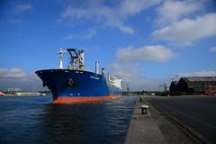 Star Laguna DST_0250 (larry_antwerp) Tags: griegstar starlaguna nhs antwerp antwerpen       port        belgium belgi          schip ship vessel        9593854