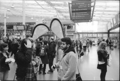 Recruiting student as they arrive in Manchester (Stuart Grout) Tags: bwfp leica m2 ilford hp5 manchester film students