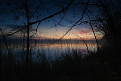 outlines (jan.scho) Tags: see teich sonnenaufgang morgen himmel himmelgluehen morgenrot spiegelungen wolken reflektionen schilff ufer kahl laubbume herbst herbststimmung mond mondsichel halbmond nachthimmel