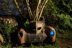 Trees driving (Aztravelgrl (Sandra Jungling)) Tags: georgia oldcarcity usa abandon car longexposure lowlight moonlight nightphotography white unitedstates us