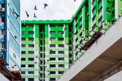 Symphony (kiatography1) Tags: rochorcentre rochor centre singapore urban town community hdb housingdevelopmentboard bugis facades landscape cityscapes land city scapes buildings housing people streets colorful colourful color colours house housings