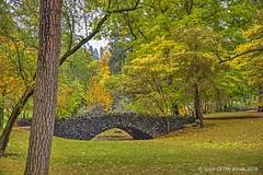 The Bridge At The Park (jimgspokane) Tags: autumn fall trees parks bridges spokanewashingtonstate otw nikonflickraward