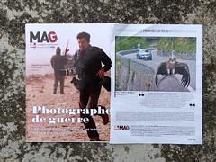 Je lis le MAG de Sud-Ouest toujours avec un certain retard et .... surprise! J'ai immédiatement reconnu cette photo qui m'a tant plu (et étonnée) dans la galerie de Thierry. (Marie-Hélène Cingal) Tags: