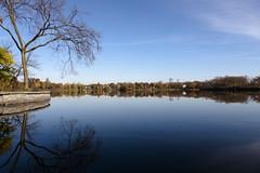 Minneapolis across Lake of the Isles (Lucie Maru) Tags: lake cedarlake water reflections mirror mirrorreflections reflectionsinwater fall fallcolors landscape horizon minnesota minneapolis urbanpark park