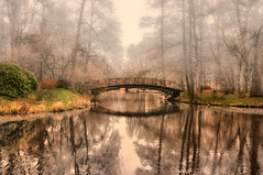 "...only the rustle of those colours waving in the air, impenetrable, lighter than nothingness...   Alessandro Baricco, from a book ""Silk"" (eggii) Tags: palacegardens pszczyna castleinpszczyna mist cold rain bridge fog colours air reflections"