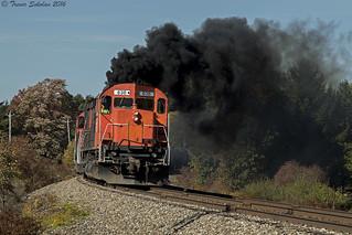 Professional Coal Roller