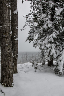 More snow and white out conditions, Waskesiu Lake, Prince Albert National Park