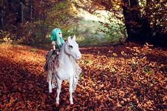 Forest Trip (Einwegherz) Tags: bjd abjd balljointeddoll forest woods nature doll fairyland minifee mnf rheia girl slim msd battat our generation horse riding autumn fall